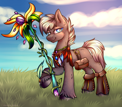 Size: 3400x3000 | Tagged: safe, artist:cornelia_nelson, oc, oc only, earth pony, accessories, commission, druid, male, staff, stallion