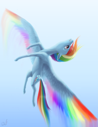 Size: 2157x2781 | Tagged: safe, artist:draknairy, rainbow dash, pegasus, pony, colored wings, female, flying, mare, multicolored wings, rainbow wings, sky, spread wings, wings