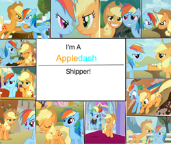 Size: 1280x1079 | Tagged: safe, artist:bla5t3r, applejack, rainbow dash, fall weather friends, non-compete clause, the last problem, the saddle row review, the ticket master, spoiler:s09e26, appledash, collage, female, granny smith's scarf, lesbian, older, older applejack, older rainbow dash, shipping