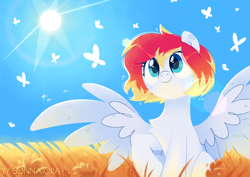Size: 1414x1000 | Tagged: safe, artist:sonnatora, oc, oc:spectrum beam, butterfly, pegasus, pony, chest fluff, female, field, mare, outdoors, pegasus oc, raised hoof, scenery, sitting, sky, smiling, solo, spread wings, sun, three quarter view, wings