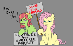 Size: 1233x780 | Tagged: safe, artist:jellymaggot, fluttershy, tree hugger, earth pony, pegasus, pony, /mlp/, 4chan, drawthread, duo, greta thunberg, how dare you?, protecc, protest, sign, simple background, text