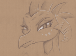 Size: 4400x3267   Tagged: safe, artist:flutterstormreturns, princess ember, dragon, absurd resolution, bust, dragoness, female, frown, grumpy, monochrome, pencil drawing, portrait, signature, solo, traditional art