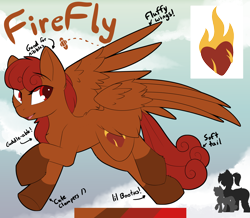 Size: 3456x3016 | Tagged: safe, artist:beardie, oc, oc only, oc:firefly, pegasus, chest fluff, commission, eye clipping through hair, flying, reference sheet, smiling, spread wings, wings
