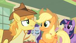 Size: 1280x720 | Tagged: safe, screencap, applejack, braeburn, fluttershy, rarity, twilight sparkle, earth pony, pegasus, pony, unicorn, over a barrel