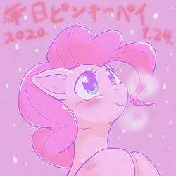 Size: 1536x1536 | Tagged: safe, artist:kurogewapony, pinkie pie, earth pony, pony, female, mare, solo