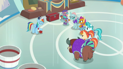Size: 1920x1080 | Tagged: safe, screencap, lighthoof, ocellus, rainbow dash, shimmy shake, smolder, snips, yona, changedling, changeling, dragon, earth pony, pegasus, pony, yak, 2 4 6 greaaat, spoiler:s09e15, bow, cheerleader, cloven hooves, dragoness, female, hair bow, hat, monkey swings, top hat