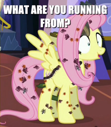 Size: 648x744 | Tagged: safe, edit, edited screencap, screencap, fluttershy, insect, pegasus, pony, every little thing she does, adoracreepy, caption, creepy, cropped, cute, game boy camera, image macro, meme, solo, text