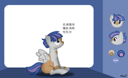 Size: 1465x900   Tagged: safe, artist:99999999000, oc, oc:liu peiqi, pegasus, pony, chinese, female, filly, reference sheet, solo, younger