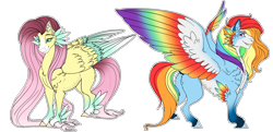 Size: 2776x1340 | Tagged: safe, artist:xxgrapehatzxx, fluttershy, rainbow dash, pegasus, pony, colored wings, duo, feathered fetlocks, female, hooves, long mane, long tail, mare, missing cutie mark, multicolored wings, rainbow wings, smiling, smirk, wings