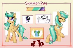 Size: 2894x1932 | Tagged: artist needed, safe, oc, oc only, oc:summer ray, pegasus, pony, reference sheet, solo