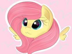 Size: 1600x1200 | Tagged: safe, artist:jannel, fluttershy, pegasus, pony, catface, pink background, simple background, solo