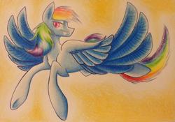 Size: 2429x1698 | Tagged: safe, artist:sparklemongoose, rainbow dash, pegasus, pony, badass, cool, female, flying, mare, wings