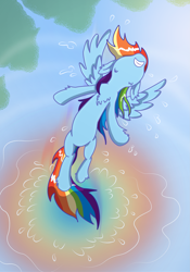 Size: 2051x2924 | Tagged: safe, artist:ponyfhtagn, rainbow dash, pegasus, pony, cool, female, flying, mare, reflection, solo, splash, spread wings, water, wings