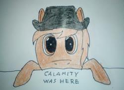 Size: 2448x1780 | Tagged: safe, artist:überreaktor, oc, oc:calamity, pegasus, pony, fallout equestria, clothes, dashite, desperado hat, hoodie, kilroy, kilroy was here, solo, text, traditional art