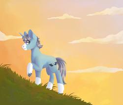 Size: 1400x1200 | Tagged: safe, artist:flaming-trash-can, oc, oc:alas negras, pony, unicorn, background, sky, sunset, ych result