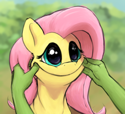 Size: 1236x1128 | Tagged: safe, artist:whiskeypanda, fluttershy, oc, oc:anon, human, pegasus, pony, /mlp/, 4chan, adoracreepy, blessed image, blursed image, bust, cheek squish, creepy, creepy smile, cursed image, cute, drawthread, duo, female, forced smile, hand, mare, offscreen character, pinching, ponified, ponified animal photo, shyabetes, smiling, solo focus, squishy cheeks