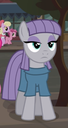 Size: 417x785   Tagged: safe, screencap, maud pie, earth pony, pony, the gift of the maud pie, cropped, female, lidded eyes, mare, offscreen character, solo