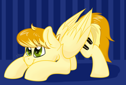 Size: 1280x865 | Tagged: safe, artist:cadetredshirt, oc, oc only, pegasus, pony, ear fluff, pounce, smiling, solo, ssimple background, two toned mane, two toned tail
