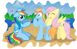 Size: 900x579   Tagged: safe, artist:kannatc, fluttershy, rainbow dash, oc, oc:harmony star, oc:prince harmony, alicorn, parasprite, alicorn oc, cider, male, stallion, wet mane