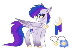 Size: 2500x1650   Tagged: safe, artist:koloredkat, oc, oc only, oc:astral, pegasus, pony, colored hooves, dock, eye scar, female, jewelry, magical lesbian spawn, mare, necklace, offspring, parent:rainbow dash, parent:twilight sparkle, parents:twidash, reference sheet, scar, simple background, solo, transparent background