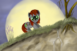 Size: 4409x2893 | Tagged: safe, artist:joycat, oc, pegasus, pony, female, flower, high res, mare, moon, solo