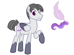 Size: 4500x3375 | Tagged: safe, artist:avatarmicheru, oc, oc:plume, pegasus, pony, base used, male, raised hoof, simple background, solo, stallion, transparent background, two toned wings, wings