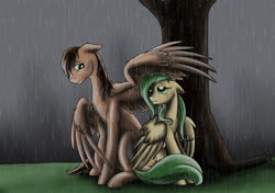 Size: 1200x844   Tagged: safe, artist:28gooddays, oc, oc only, covering, rain, shipping, tree, wing covering, wing umbrella, wings