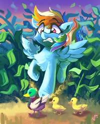 Size: 1280x1591   Tagged: safe, artist:saxopi, rainbow dash, bird, duck, pegasus, pony, duckling, female, mare, raised hoof, signature, surprised