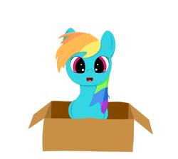 Size: 500x447 | Tagged: safe, artist:srbolsa, rainbow dash, pony, box, cute, dashabetes, pony in a box, solo