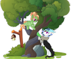 Size: 3190x2655 | Tagged: safe, artist:kurosawakuro, oc, oc only, draconequus, pegasus, pony, base used, bird house, colored pupils, female, high res, intertwined trees, male, mare, rock, simple background, transparent background, tree