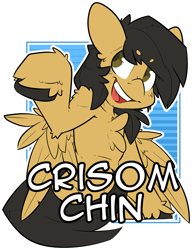 Size: 1569x2048 | Tagged: safe, artist:bbsartboutique, oc, oc:crisom chin, pegasus, badge, solo, wings
