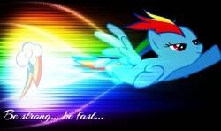 Size: 800x474   Tagged: safe, artist:z3bradan, rainbow dash, pegasus, cutie mark, female, flying, neon, quote, rainbow, solo, wallpaper