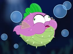 Size: 2732x2048 | Tagged: safe, artist:justsomepainter11, spike, fish, puffer fish, my little pony: the movie, spoiler:my little pony movie, big eyes, bubble, puffy cheeks, species swap, spike the pufferfish, underwater