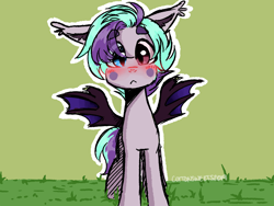 Size: 1600x1200 | Tagged: safe, artist:cottonsweets, oc, oc only, oc:blueberry moon, bat pony, pony, bat pony oc, blushing, cute, eye clipping through hair, floppy ears, green background, heterochromia, looking at you, original character do not steal, simple background, solo, spread wings, wings