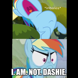 Size: 500x500 | Tagged: safe, edit, edited screencap, screencap, fluttershy, rainbow dash, pegasus, pony, spike at your service, tanks for the memories, angry, caption, dialogue, do i look angry, female, image macro, inhaling, looking at you, mare, meme, offscreen character, text, wings