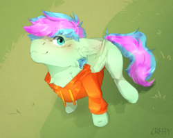 Size: 1280x1024 | Tagged: safe, artist:suplolnope, oc, oc only, oc:gusty breeze, pegasus, pony, clothes, grass, hoodie, looking at you, solo