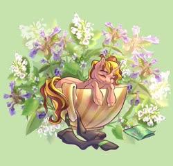 Size: 2260x2160 | Tagged: safe, artist:lura gayz, oc, oc only, oc:drew dru, pony, unicorn, clothes, cup, cup of pony, flower, micro, socks, solo, teabag, teacup