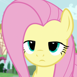 Size: 1080x1080 | Tagged: safe, screencap, fluttershy, pegasus, pony, testing testing 1-2-3, cropped, female, fluttershy is not amused, mare, solo, unamused