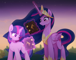 Size: 5300x4200   Tagged: safe, artist:maren, twilight sparkle, alicorn, pony, unicorn, mlp fim's tenth anniversary, the last problem, absurd resolution, book, crown, crying, cutie mark, duality, ethereal mane, female, glowing horn, happy birthday mlp:fim, hoof shoes, horn, jewelry, levitation, magic, mare, memories, older, older twilight, ponyville, princess twilight 2.0, regalia, self ponidox, smiling, stars, sunset, tears of joy, telekinesis, time paradox, tree, twilight sparkle (alicorn), unicorn twilight