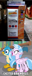Size: 593x1383   Tagged: safe, gallus, silverstream, fish, griffon, hippogriff, salmon, birb, carnivore, cute, diastreamies, excited, furry reminder, gallabetes, happy, mouth wide open, norwegian salmon, smiling, translation error, vending machine