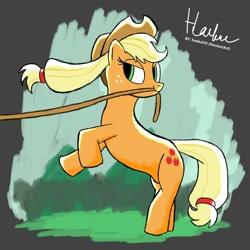 Size: 1080x1080   Tagged: safe, artist:haekal20, applejack, earth pony, pony, rodeo, solo