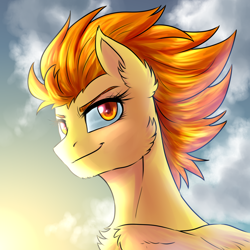 Size: 1920x1920 | Tagged: safe, artist:not-ordinary-pony, derpibooru exclusive, spitfire, pegasus, pony, bust, cheek fluff, chest fluff, cloud, confident, ear fluff, female, looking back, mare, portrait, sky, smiling, solo