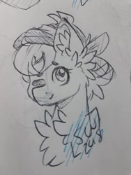 Size: 720x960 | Tagged: safe, artist:silentwolf-oficial, oc, oc only, earth pony, pony, bust, chest fluff, ear fluff, earth pony oc, hat, lineart, one eye closed, signature, solo, traditional art, wink