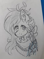Size: 720x960 | Tagged: safe, artist:silentwolf-oficial, oc, oc only, earth pony, pony, bust, chest fluff, ear fluff, earth pony oc, lineart, neckerchief, signature, solo, traditional art