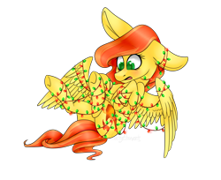 Size: 1538x1258 | Tagged: safe, artist:daringpineapple, oc, oc only, oc:phoenix feather, pegasus, pony, christmas, christmas lights, female, holiday, simple background, solo, tangled up, transparent background