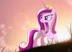 Size: 4444x3227 | Tagged: safe, artist:zidanemina, princess cadance, alicorn, pony, absurd resolution, cutie mark, dusk, female, grass, looking back, mare, raised hoof, smiling, solo, sun