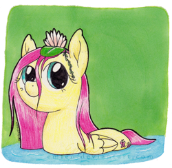 Size: 800x781 | Tagged: safe, artist:emfen, fluttershy, pegasus, pony, behaving like a bird, cute, female, flower, flower in hair, folded wings, lilypad, looking at you, mare, pond, shyabetes, smiling, solo, stray strand, three quarter view, traditional art, water, water lily, wet, wet mane, wings