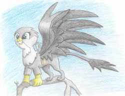 Size: 2119x1638 | Tagged: safe, artist:goldenflow, gabby, griffon, bag, beak, branches, colored pencil drawing, female, happy, leonine tail, paws, sky, solo, spread wings, talons, traditional art, tree, wings