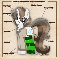 Size: 5000x5000   Tagged: safe, artist:pokemonfan111, oc, oc only, pony, unicorn, clothes, cute, digital art, equine anatomy, socks, solo, striped socks