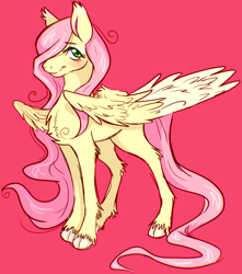 Size: 3221x3651 | Tagged: safe, artist:melodythepuppy, fluttershy, pegasus, pony, chest fluff, cloven hooves, cute, leg fluff, pink background, shyabetes, simple background, solo, unshorn fetlocks